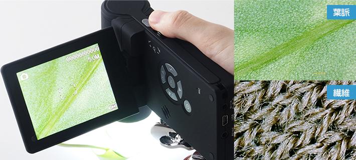顕微鏡撮影イメージ