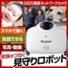 3R-BAYPER IPカメラ搭載ロボット